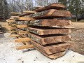 Felling and milling a sweet gum tree
