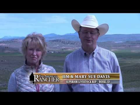 2015 American Rancher Featuring Ludvigson Stock Farms & Wedel Red Angus