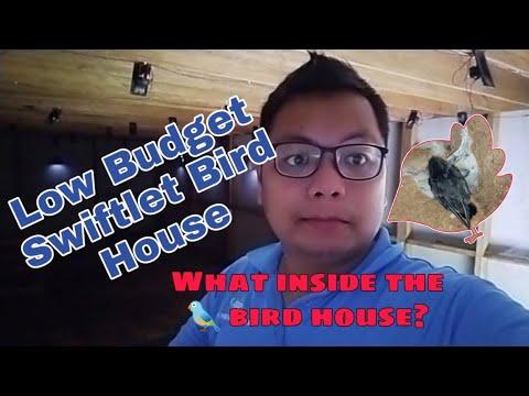 Low Budget Swiftlet Bird House