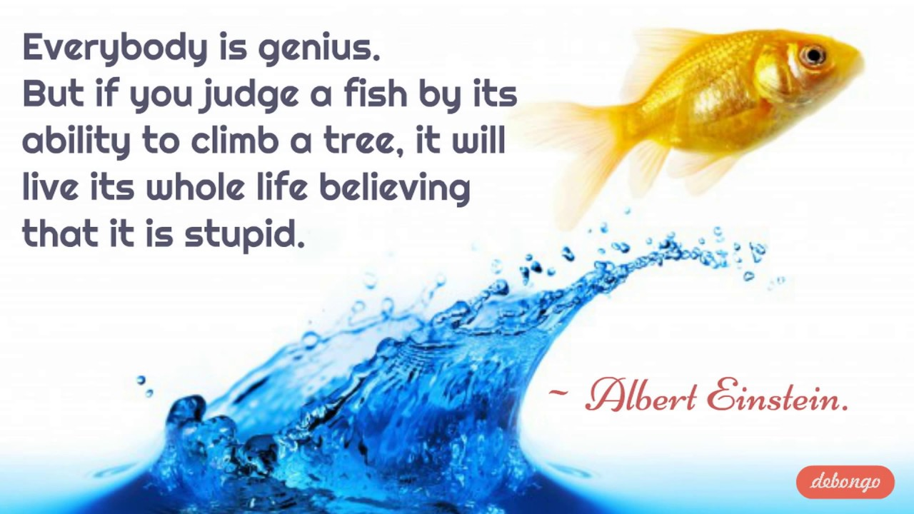 Everybody Is Genius Deep Meaning Quotes Youtube
