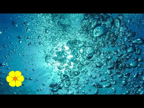 2 HOURS Underwater Bubble Sounds - Water Bubbles Music Nature Sounds to Relax Meditation White Noise