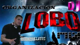 SALSA MIX DJ LOBO EL ORIGINAL
