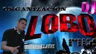 SALSA MIX DJ LOBO EL ORIGINAL