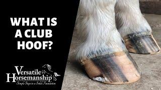 WHAT IS A CLUB HOOF? // Versatile Horsemanship