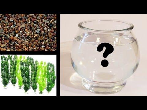 How To Set Up a Goldfish Bowl - SARCASM ALERT!