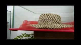 La Ruta del Sombrero Pintao