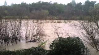 RUSSIAN RIVER FLOODING 12/11/14