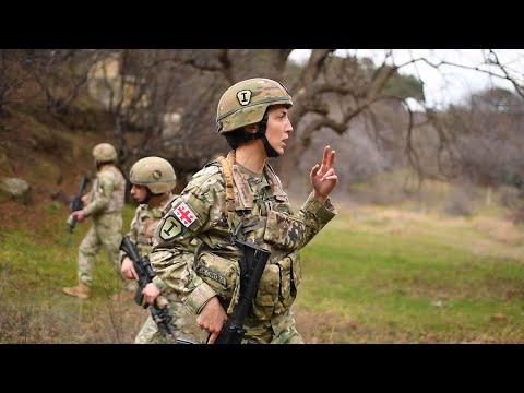 Джильда Цурцумия - Силы быстрого реагирования НАТО в Грузии