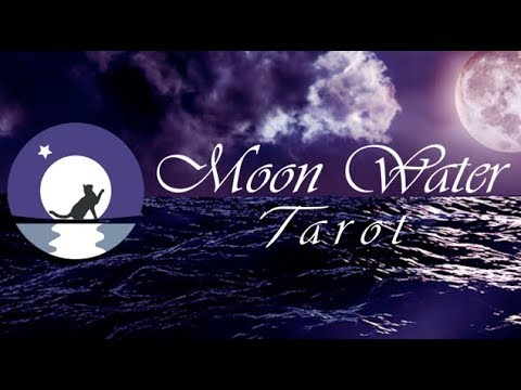 moonwater tarot pisces november 2019