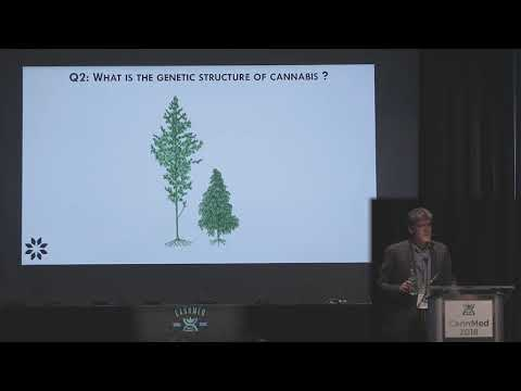 Using Genomics to Unlock the Full Potential of Cannabis – Jonathan Page, Ph.D.