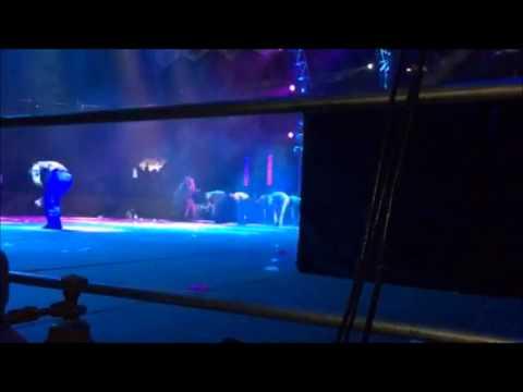 Daddy Yankee - Wisin y Yandel Backstage JV14