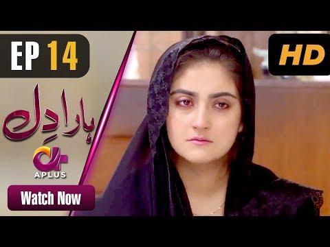 Haara Dil - Episode 14 | Aplus Dramas | Danish Taimoor, Hiba Bukhari | Pakistani Drama