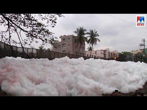തടാകങ്ങളില് വിഷപ്പത ഉയരുന്നു   Bengaluru Bellandur lake