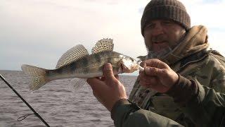 видео Все о рыбалке: Семейство корюшковые