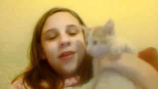 my kitten !!!!!! Thumbnail