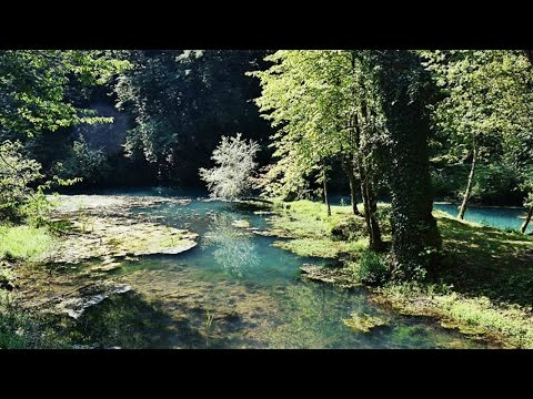 IS THE MOST BEAUTIFUL PLACE IN EUROPE IN SLOVENIA!? | Daily Travel Vlog 153, Big Berry, Bela krajina