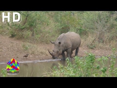 South Africa Combined Episodes 112-124