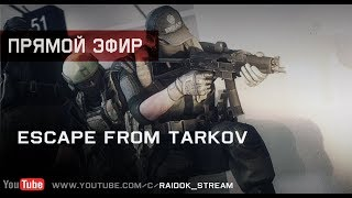 - Stream by Raidok #233.