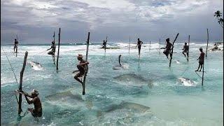Một Ngư Dân Đánh Bắt Cá Trong Sóng Biển