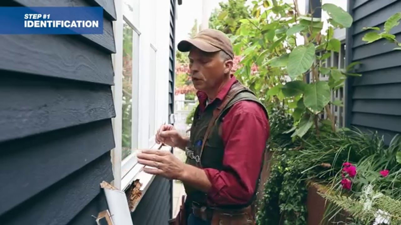 How To Repair Decayed Window Trim Youtube