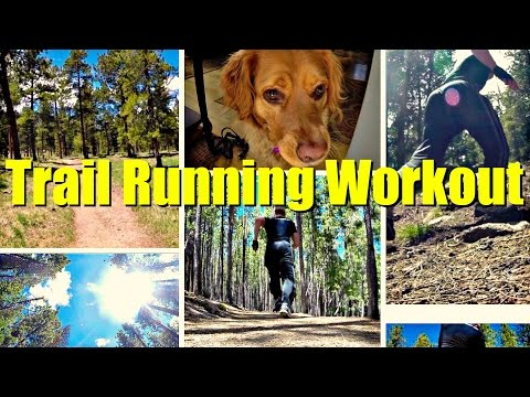 Sean's Trail Running Cross Training Workout! Cardio Insanity Bodyweight Outside Training Program