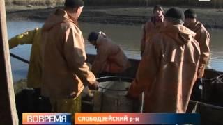В приднестровских водоёмах вскоре появится новый вид карпа.