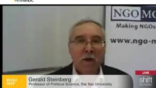 Prof. Gerald Steinberg, MSNBC, Discussing Amnesty on Gaza War