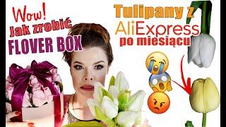 TULIPANY z Aliexpress  PO MIESIĄCU :/  ♥JAK ZROBIĆ WIECZNY FLOVER BOX