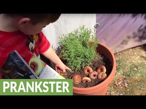 Parents Pull Off Hilarious April Fool's Prank On Kids