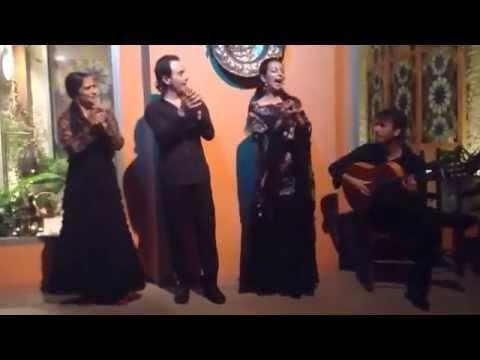 Flamenco en la Casa de la Memoria, Sevilla