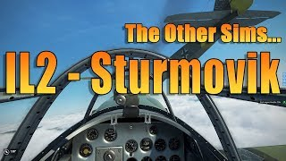 THE OTHER SIMS - IL2 STURMOVIK