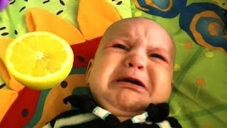 Videos of babies eating lemon for the first time