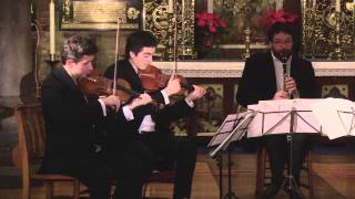 Download Brahms Clarinet Quintet op.115 IV - Con moto MP3 song and Music Video