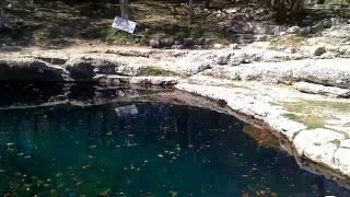Cenote de Dzibilchaltun, Yuc.