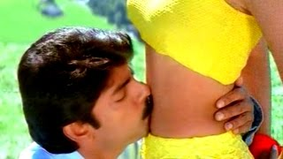 Vanamaali Vanamalli Video Song || Srimathi Vellostha Movie || Jagapati Babu, Devayani