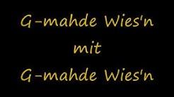 G-mahde Wies'n - G-mahde Wies'n