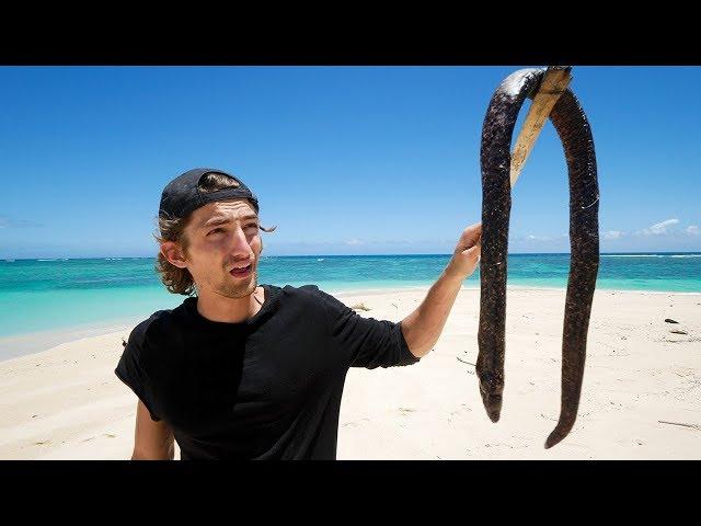 饥饿的网红在荒岛求生吃海鳗和虫子【第八集】