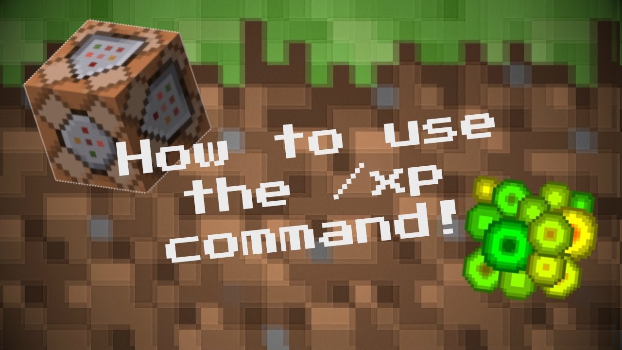 How to use the /xp command