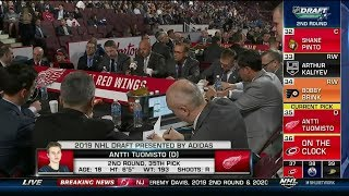 Detroit Red Wings 2019 Draft Selections (Rounds 1-3)