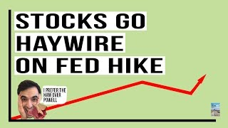 stock-market-goes-haywire-on-fed-rate-hike-computer-algorithm-confusion