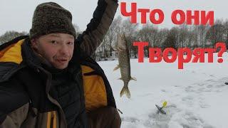 Клевая Зимняя Рыбалка на Щуку Ловля Щуки на Жерлицы Сработка за Сработкой