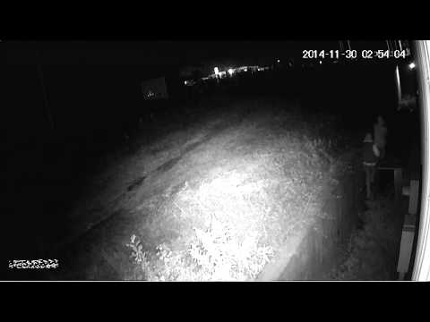 Night Hawk Monitoring apprehension 11/30/14