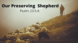 Our Preserving Shepherd