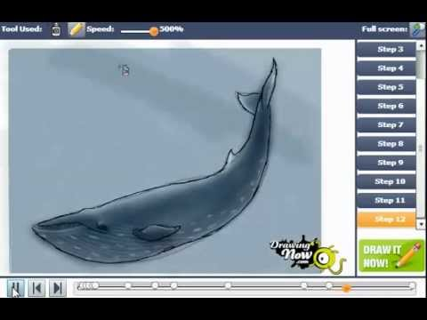 how to draw blue whales easy youtube