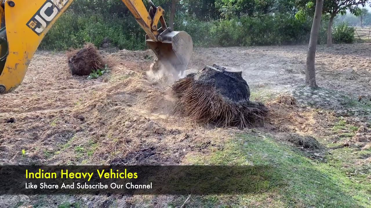 JCB Working Video In HD | JCB 3dx xtra Backhoe Machine Working Video For Digging Palm Tree.