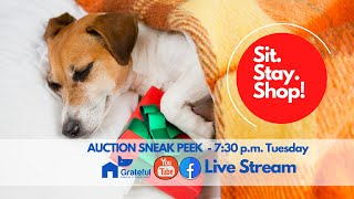 Gift auction preview - Sit. Stay. Shop!