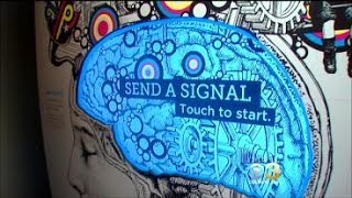 """Stephanie Stahl Takes Us Inside """"Your Brain"""" Exhibit At The Franklin Institute"""