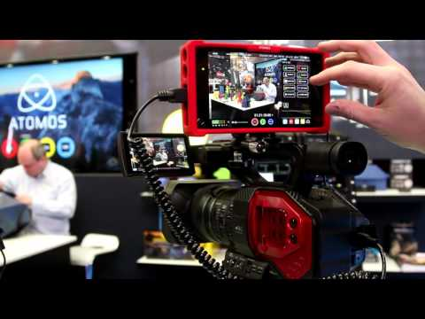 Atomos Assassin  on the Panasonic AG-DVX200