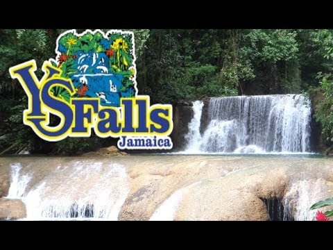 YS FALLS TRIP| Family Time //Jamaica Vlog-Beautybyposh