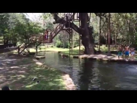 Canopy Lodge Natural Swimming Pool Youtube